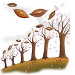 Quando piantare alberi da frutto