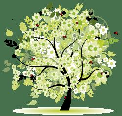 Prodotti e servizi Vivai Piante Gabbianelli