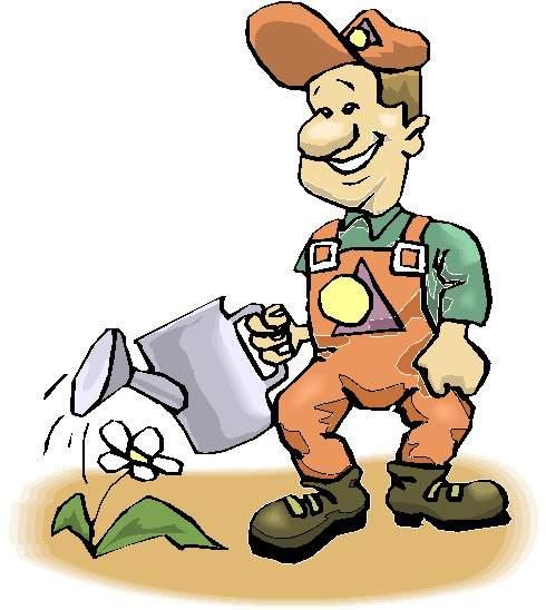 Impianto del vigneto: La manutenzione alle giovani piante di vite