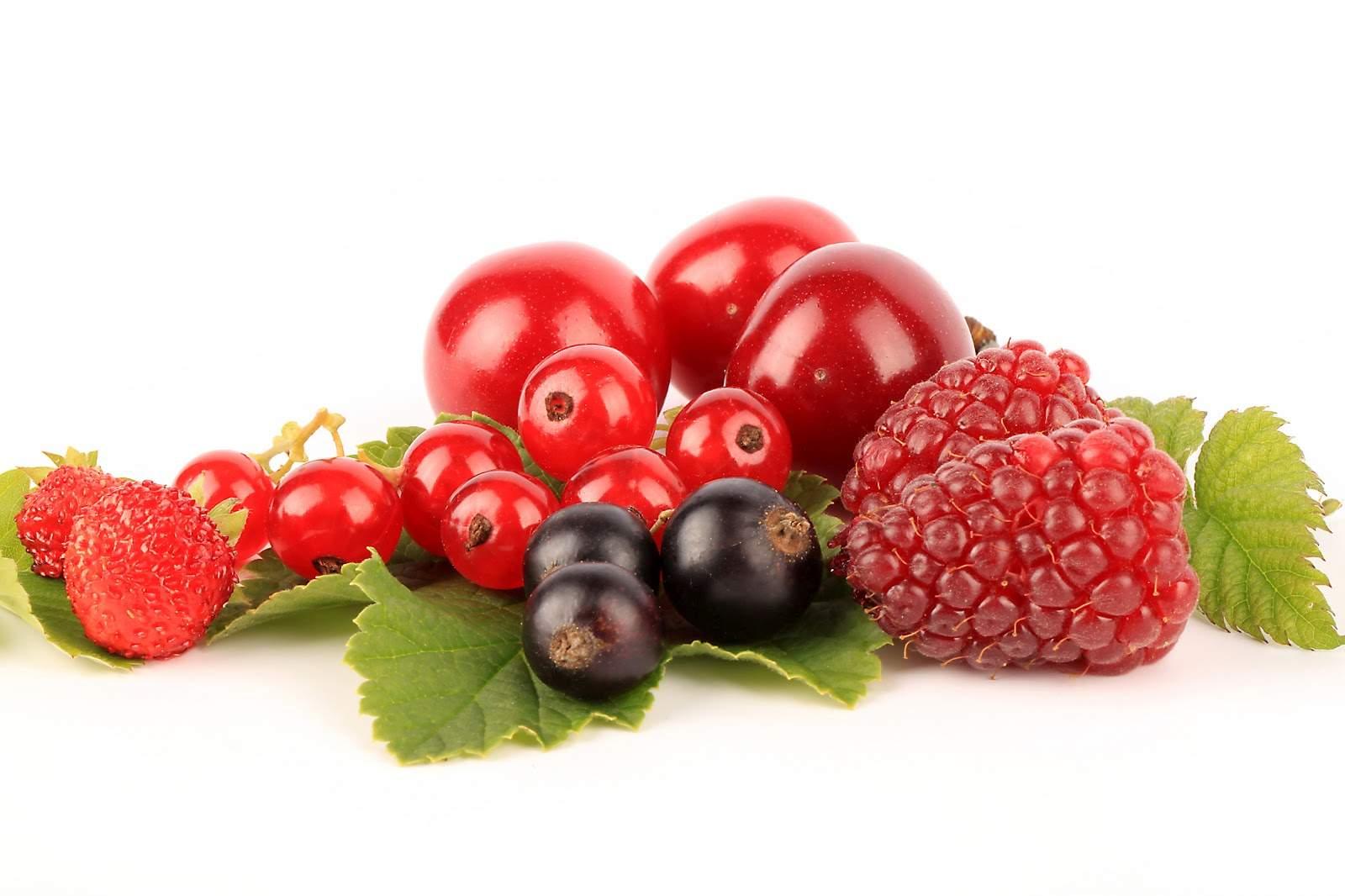 Come coltivare frutti di bosco