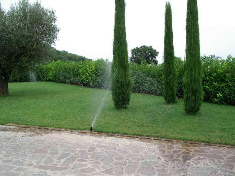 Impianti di irrigazione vivai piante gabbianelli for Irrigazione piante