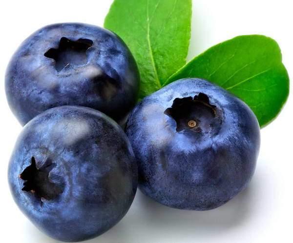 frutti rossi elenco