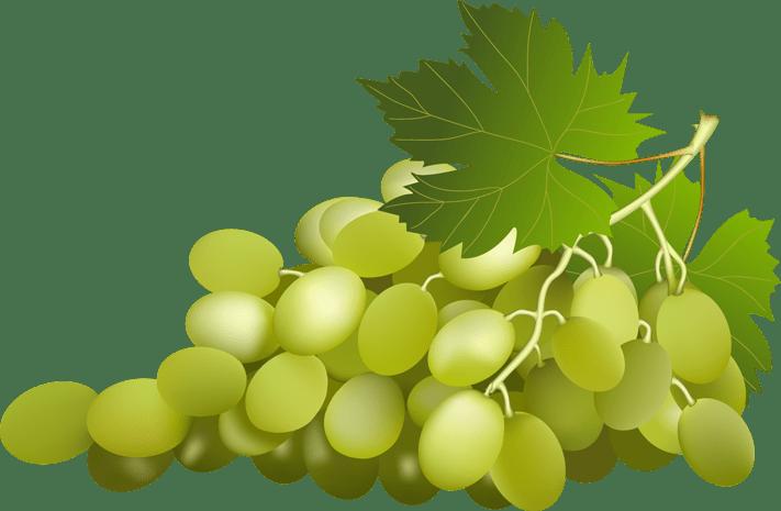 Varietà di uva da tavola